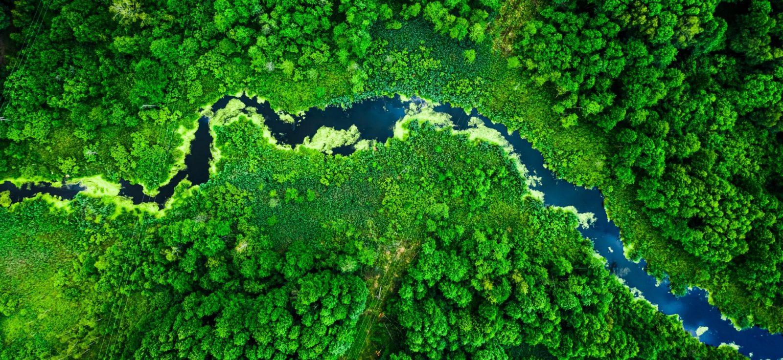 Explore Environmental